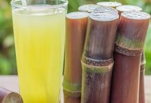 Photo of NUTRITIONAL BENEFITS OF SUGARCANE