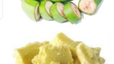 Photo of SECRETS OF PLANTAIN PEELS AND SHEA BUTTER