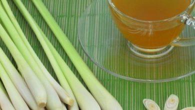 Photo of HEALTH BENEFITS OF LEMON GRASS TEA