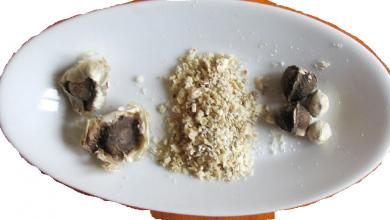 Photo of Secrets: Health Benefits of Moringa seeds