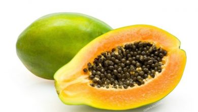 Photo of AMAZING FACTS ON PAPAYA