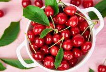 Photo of 6 Medicinal Benefits of Cherries
