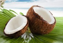 Photo of MEDICINAL BENEFITS OF COCONUT