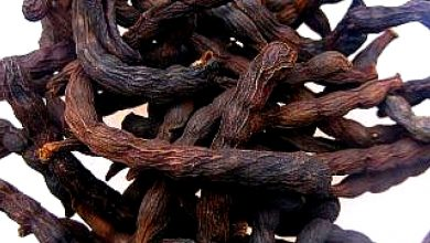 Photo of NUTRITIONAL VALUE OF UDA SEED (NEGRO PEPPER)