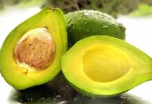 Photo of EAT AVOCADO FOR FLAWLESS SKIN