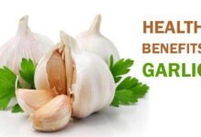 Photo of 20 PROVEN HEALTH BENEFITS OF GARLIC