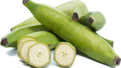 Photo of UNRIPE PLANTAIN AS REMEDY FOR EPILEPSY