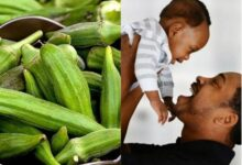 Photo of NATURAL REMEDY FOR TWIN WITH OKRA