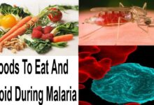 Photo of FOODS TO EAT AND FOODS AVOID WHILE TREATING MALARIA