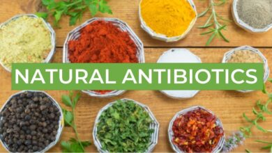 Photo of Natural Antibiotics for Infections That Are Good For Your Health
