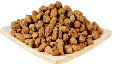 Photo of 15 HEALTHY POWERS OF TIGER NUTS