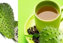 Photo of GUYABANO (SOUR SOP) TEA REMEDY FOR CANCER, DIABETES, ARTHRITIS