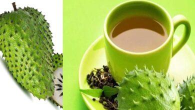 Photo of GUYABANO (SOUR SOP) TEA REMEDY FOR CANCER, DIABETES, ARTHRITIS