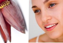 Photo of HEALING POWERS OF BANANA FLOWER