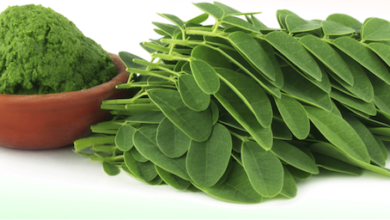 Photo of HOW TO USE MORINGA LEAVES FOR BEAUTIFUL AND BETTER SKIN COLOR