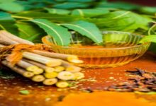 Photo of NEEM PASTE (DONGOYARO LEAF) FOR GLOWING SKIN
