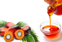 Photo of HEALING POWERS OF RED PALM OIL (A MUST READ)