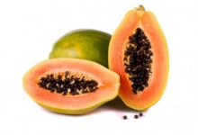 Photo of AMAZING BENEFITS YOU NEVER KNEW ABOUT PAWPAW SEED