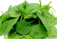 Photo of HEALTH BENEFITS AND SIDE EFFECTS OF SPINACH(MUST READ)