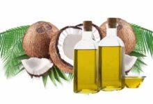 Photo of COCONUT OIL AND ITS HEALING POWERS