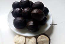 Photo of AFRICAN WALNUT AS ANTIDOTE FOR POISONS, SCORPION STINGS
