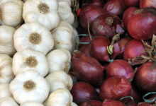 Photo of 5 REASON TO EAT MORE ONION AND GARLIC